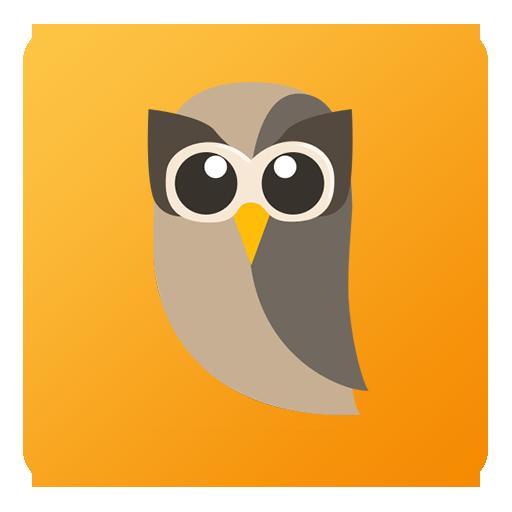 HootSuite Icon.