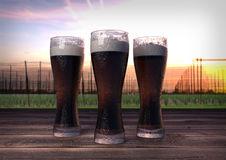 Three Glasses Dark Beer Hop Garden Background 3d Render Stock.