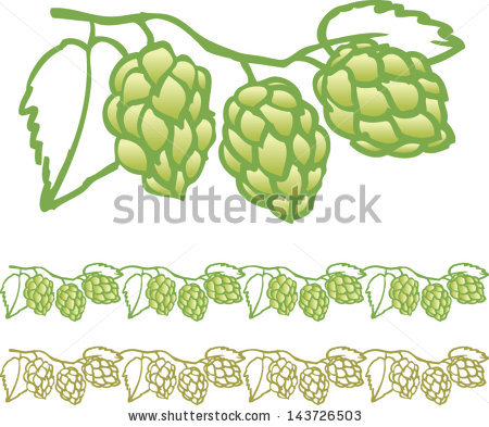 Hop Vine Stock Photos, Royalty.
