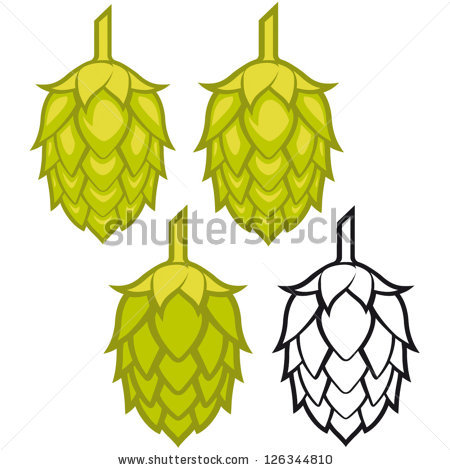 Beer Hops Stock Photos, Royalty.