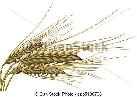 Barley Illustrations and Clip Art. 7,579 Barley royalty free.