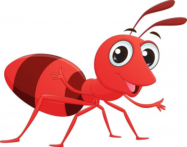 Dibujos animados de hormiga linda.