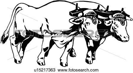 Clipart of illustration, lineart, animal, oxen, ox, team, yoke.
