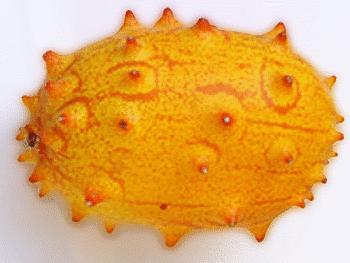 Free Melon Clipart, 2 pages of Public Domain Clip Art.