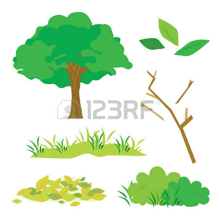 Tree And Bush Stock Photos & Pictures. Royalty Free Tree And Bush.