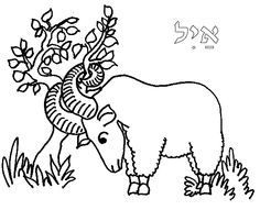 Horn shrub clipart #9