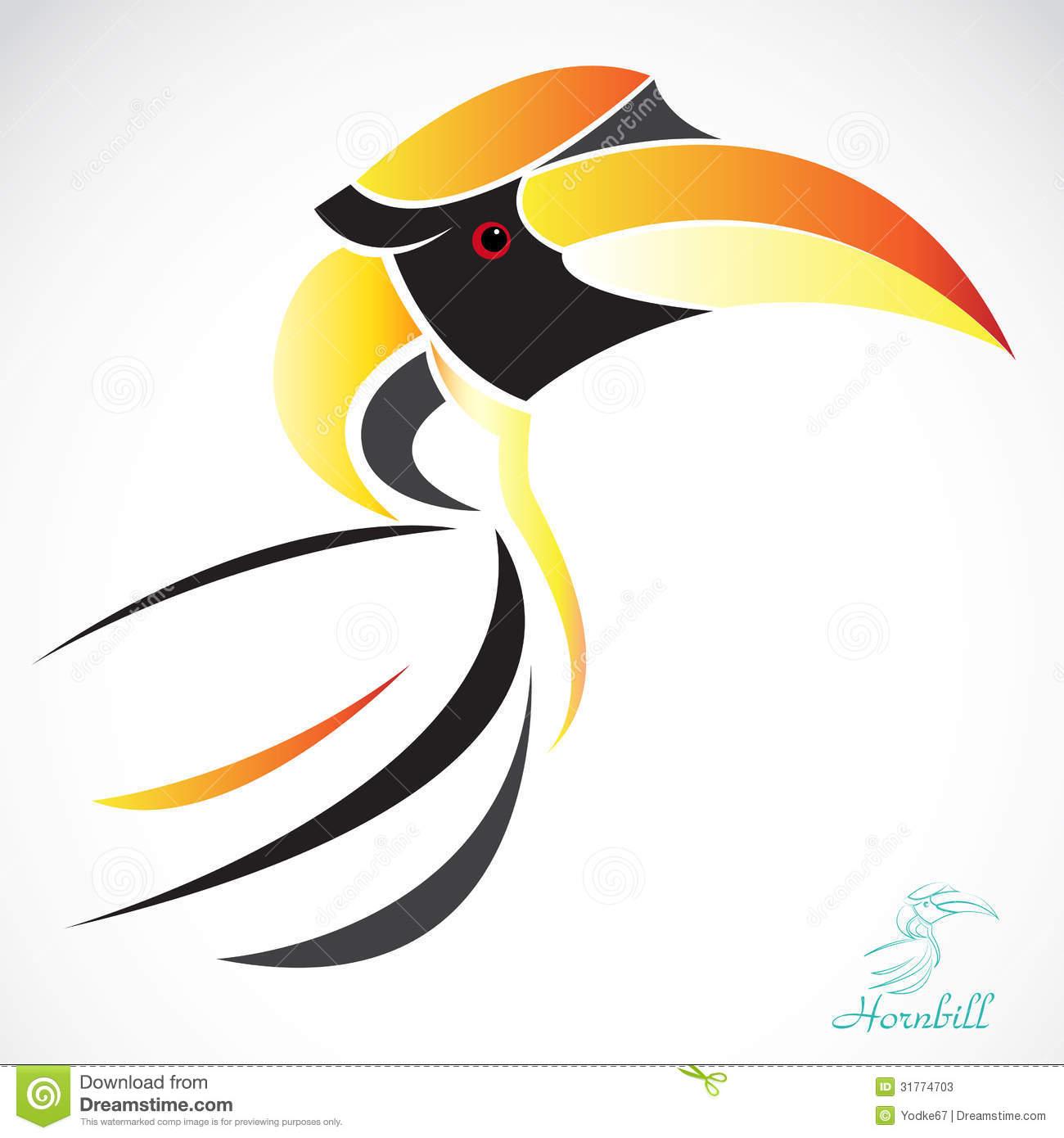 Hornbill Stock Illustrations.