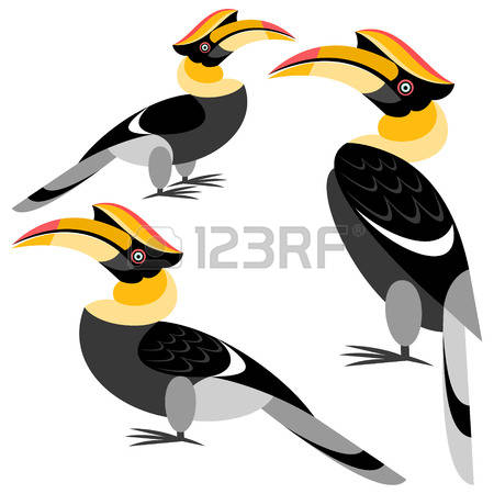 286 Hornbill Stock Illustrations, Cliparts And Royalty Free.