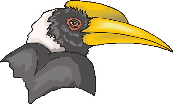 Hornbill Head Clip Art at Clker.com.