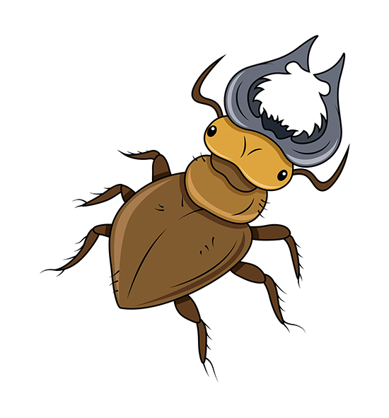 Download Free Horned Beetle Clip.