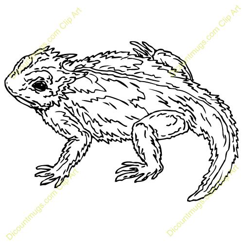 Horned lizard clipart.