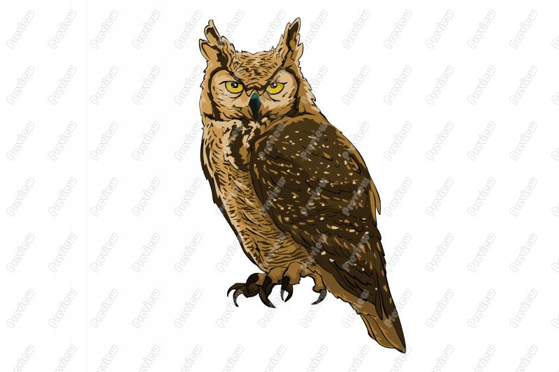 Great Horned Owl Character Clip Art.