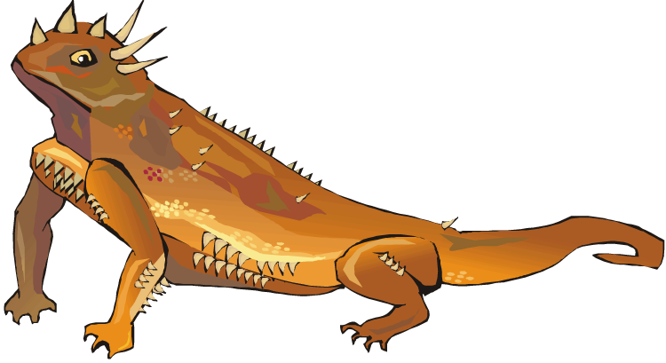 Free Horned Lizard Cliparts, Download Free Clip Art, Free Clip Art.