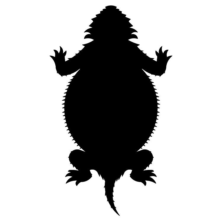 Horned toad clipart 4 » Clipart Portal.