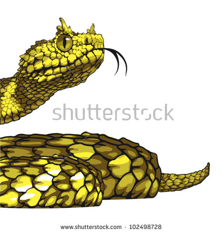 Horned viper clipart #5