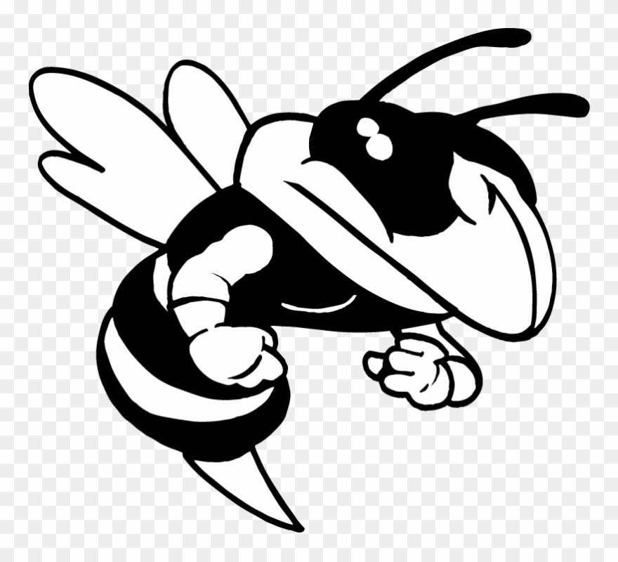 Ar5 Bee 03 Rq.