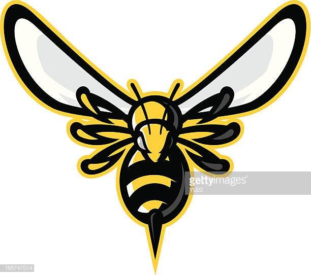 60 Top Wasp Stock Illustrations, Clip art, Cartoons, & Icons.