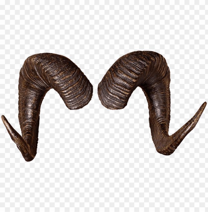 rams horns png.