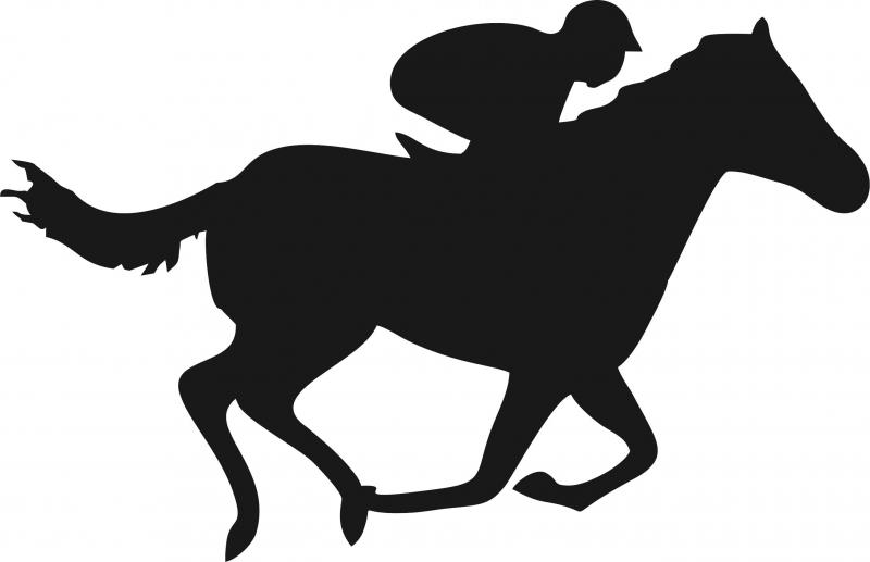 Horse And Jockey Silhouette.