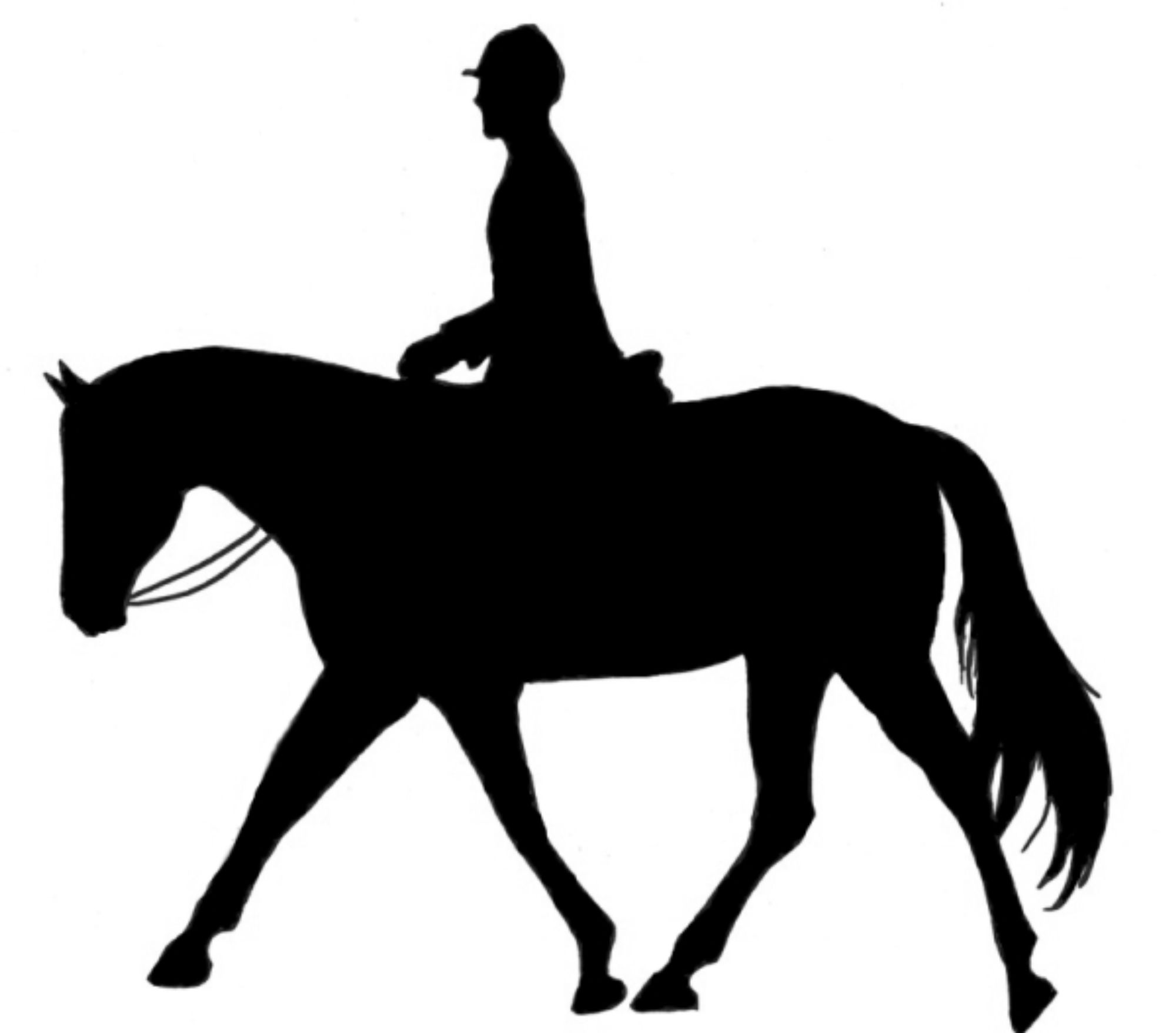 Horse And Rider Clip Art.