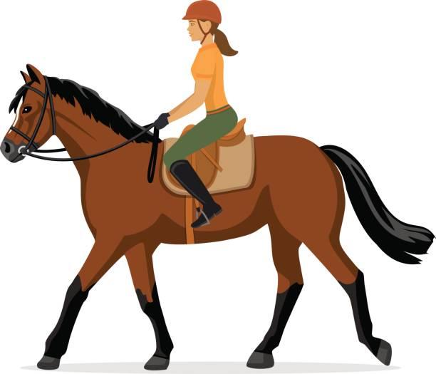 Best Horseback Riding Illustrations, Royalty.