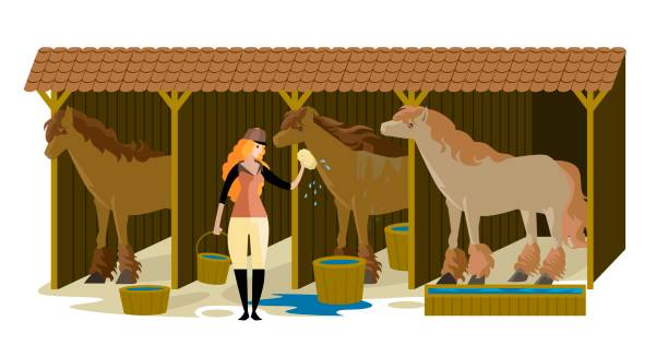 Best Horse Stable Illustrations, Royalty.