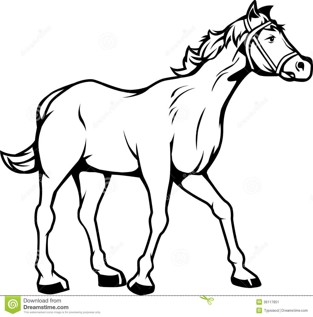 Black And White Drawing Of A Horse.