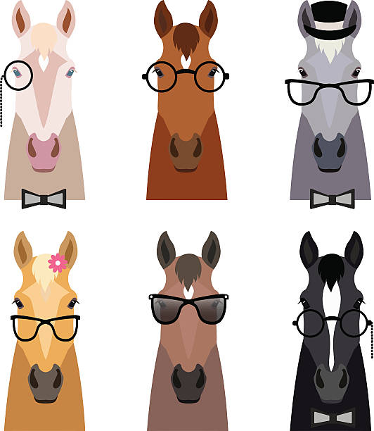 Drawing Of The Head Brown Reddish Horse Clip Art, Vector Images.