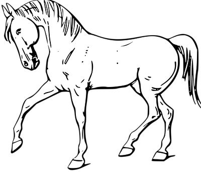 Horse clipart black and white 1 » Clipart Station.