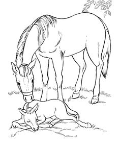 Free Printable Realistic Horse Clipart.