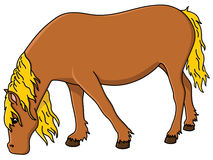 14+ Horse Eating Hay Clipart.