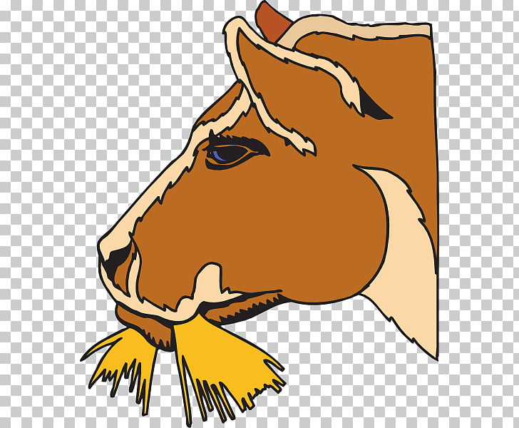 Cattle Horse Hay , Cow Eating s PNG clipart.