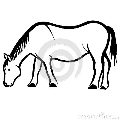 Vector Horse Eat Grass Illustration Royalty Free Stock Photos.