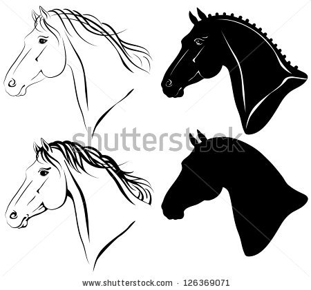 Horse Head Stock Images, Royalty.