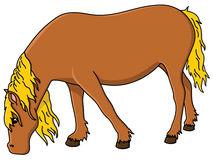 Horse Eating Hay Cartoon.