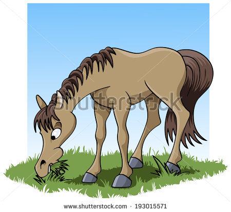 Horse Eating Stock Photos, Royalty.
