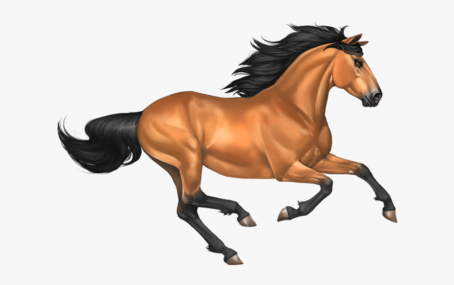 Galloping Horse Png Transparent Free Clipart Image.