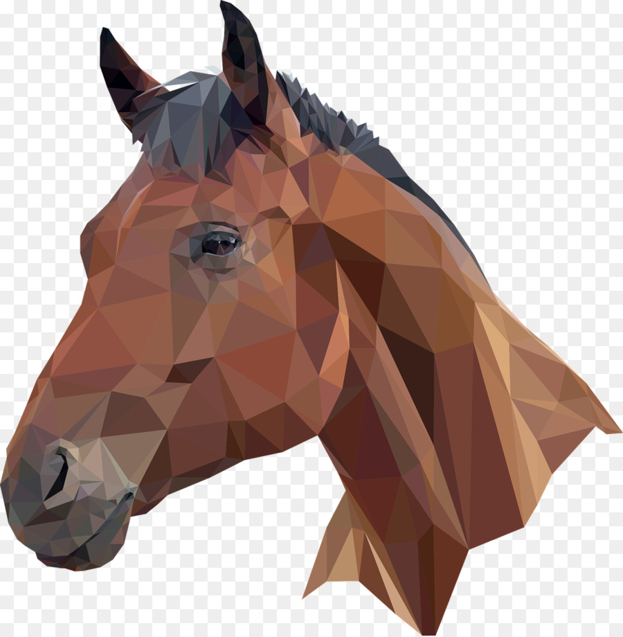 Horse Cartoon png download.