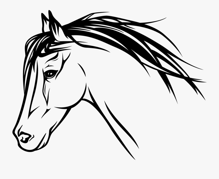 Horse Head Profile Drawing , Free Transparent Clipart.