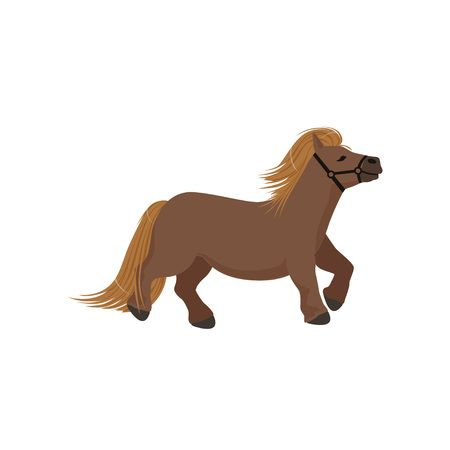 238 Miniature Horse Stock Illustrations, Cliparts And Royalty Free.