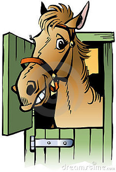 YOUR HORSES' STABLE HABITS CAN TELL YOU ALOT ABOUT HIS BEHAVIOUR.