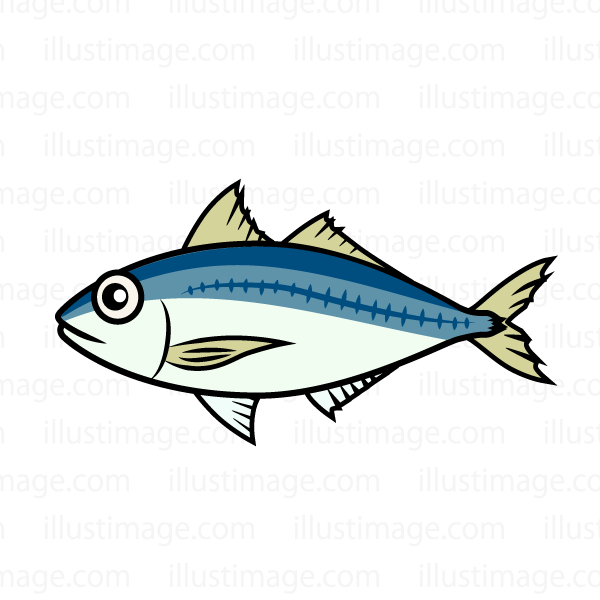 Free Horse mackerel image|Free Cartoon & Clipart & Graphics [ii].