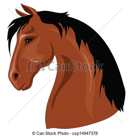 Vectors Illustration of Head of brown horse with black mane.