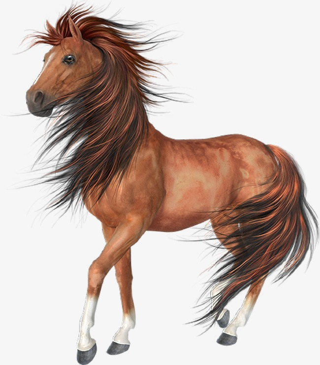 Horse PNG Images, Download 3,054 Horse PNG Resources with.