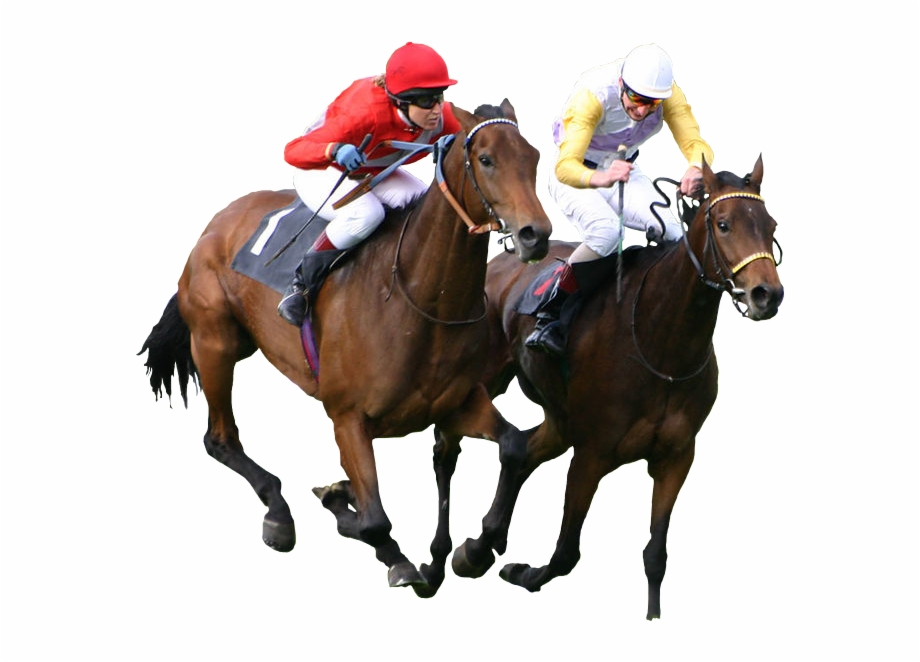 Race Horse Png.