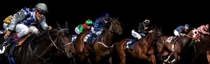 Horse Racing Png Vector, Clipart, PSD.