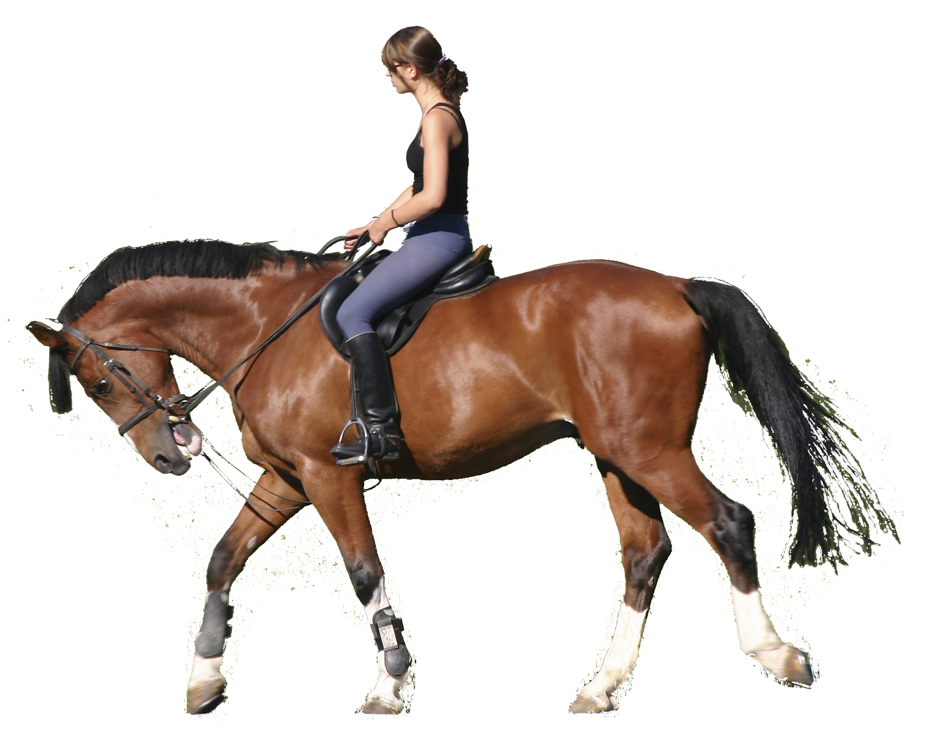 PNG Horse Riding Transparent Horse Riding.PNG Images..