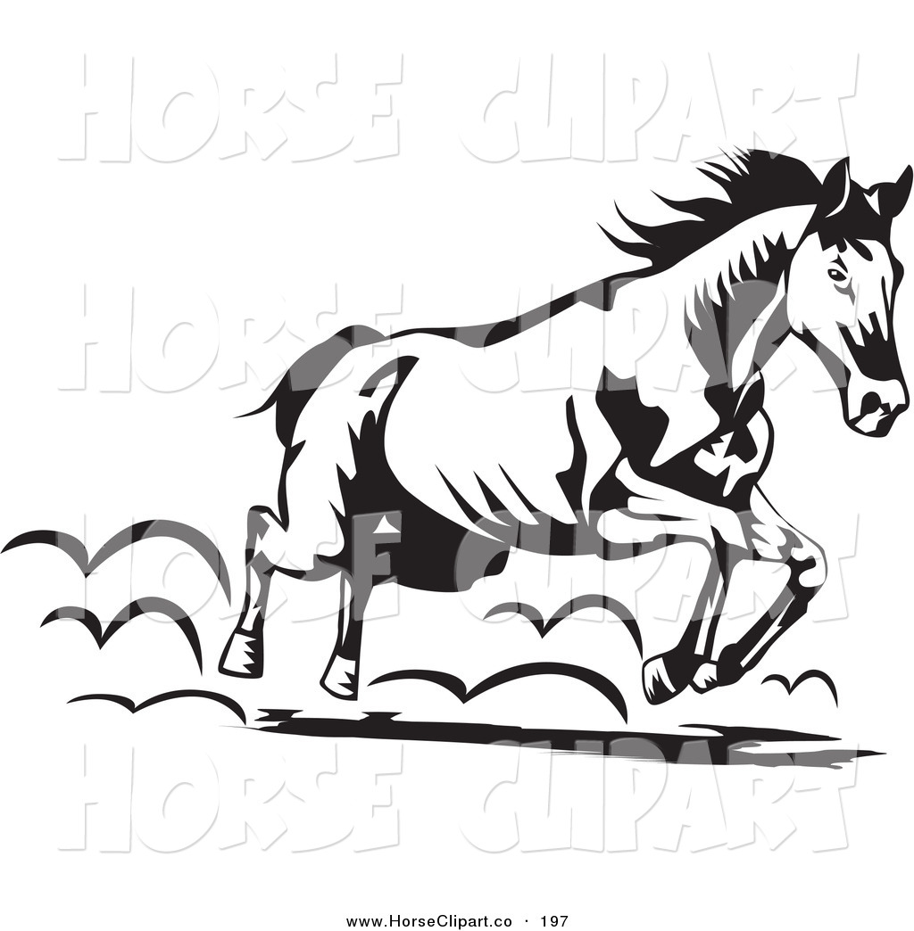 Running Horse Clipart Black And White.