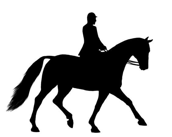 Show Horse Clipart.