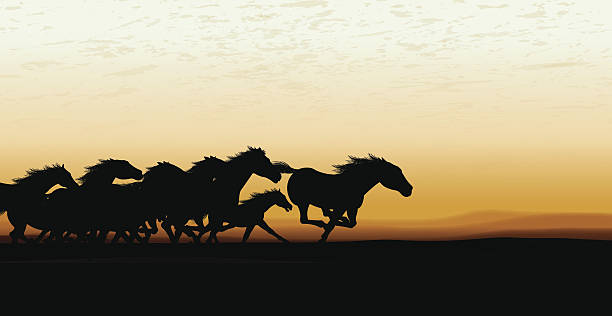 Horses Running Clip Art, Vector Images & Illustrations.